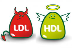 xolesterin-hdl-ldl.png